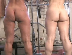 Female muscle lesbians Tia and Debbie are fresh off a gym workout when they decide they want to muscle worship each others strong legs and glutes. Never ones to miss an opportunity, we let the camera roll and captured a video that all leg lovers are going to enjoy. There's plenty of the rest of these two to be seen as well.