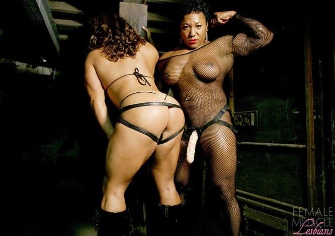 Female Muscle Lesbian 86